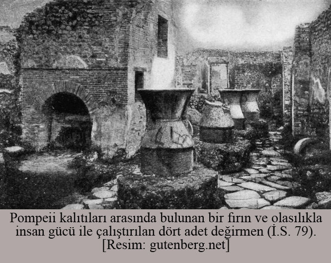 pompeiide-bir-firin-ve-bug